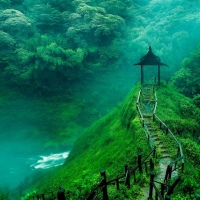 Color my world... green